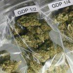 liberalizzazione droghe leggere